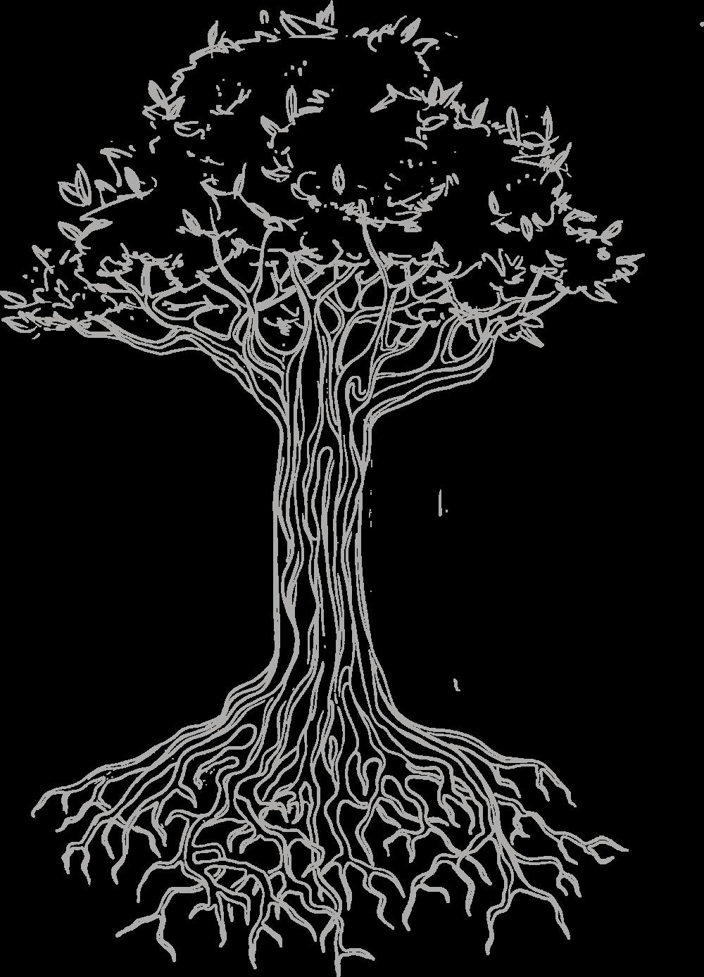 concilium_fond_arbre