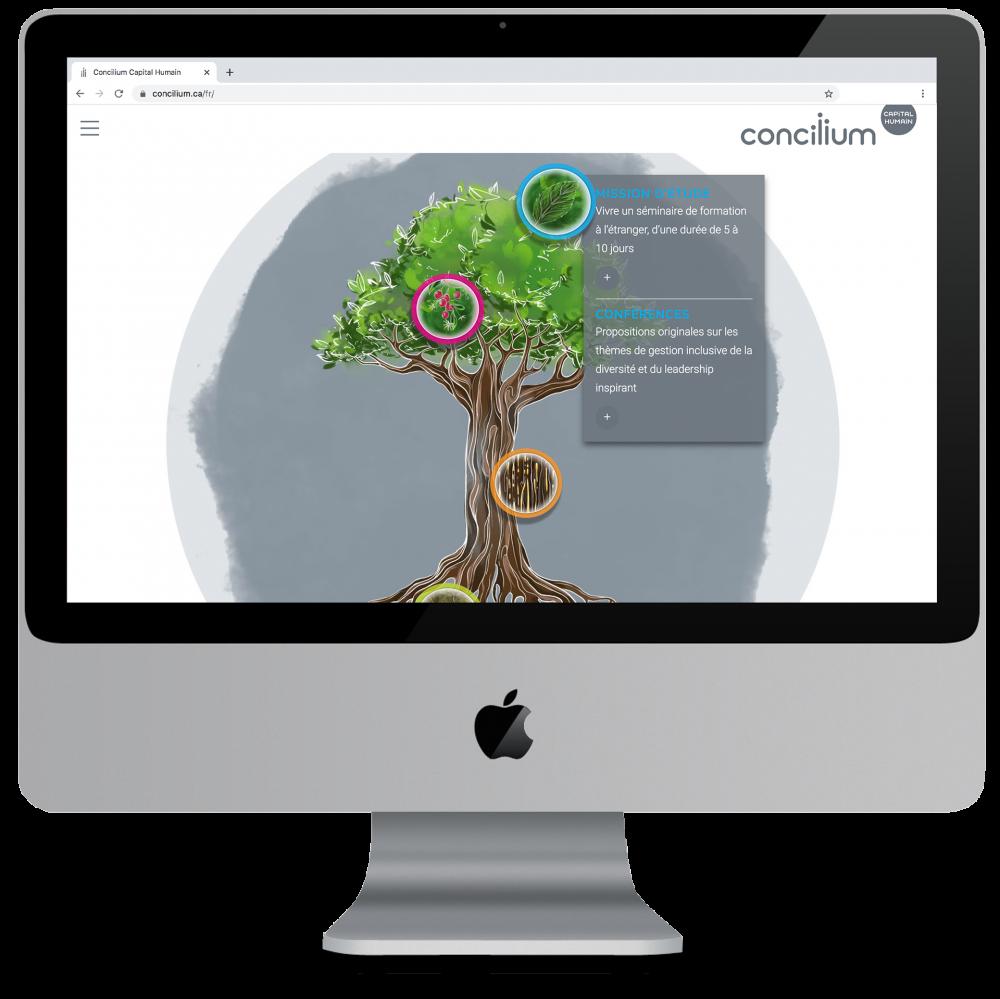 concilium_site_web_appercu-accueil